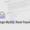 XAMPPのMySQLやMariaDBでrootユーザーのパスワードを変更する方法