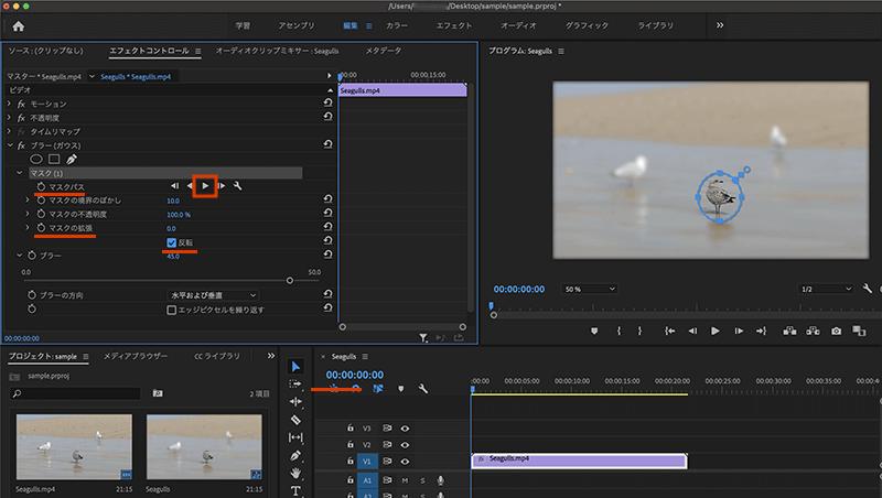 動画のぼかし効果の反転や境界線、不透明度の調整