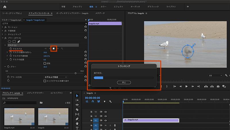 動画内の動く対象のぼかし効果のトラッキング処理