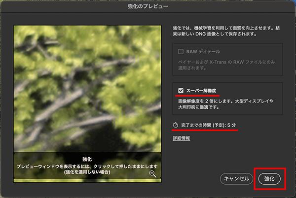 Camera Rawでスーパー解像度(Super Resolution)機能の処理を実行