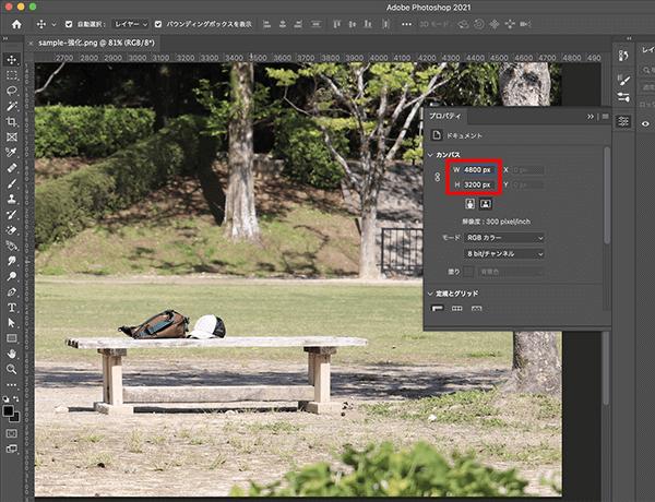 スーパー解像度(Super Resolution)機能で生成した拡大画像の確認