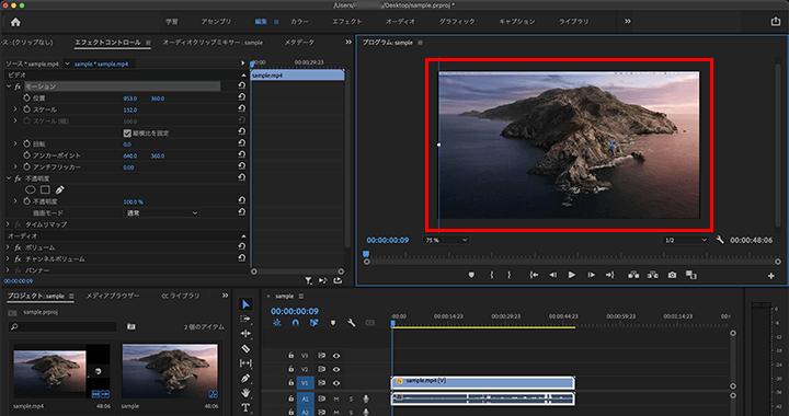 動画の表示領域を、スケールで拡大しながら位置を調整